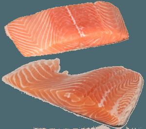 top 10 kød og fisk med protein