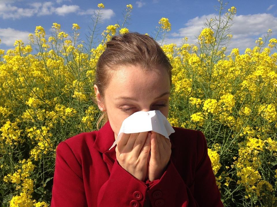 allergisk reaktion pollen