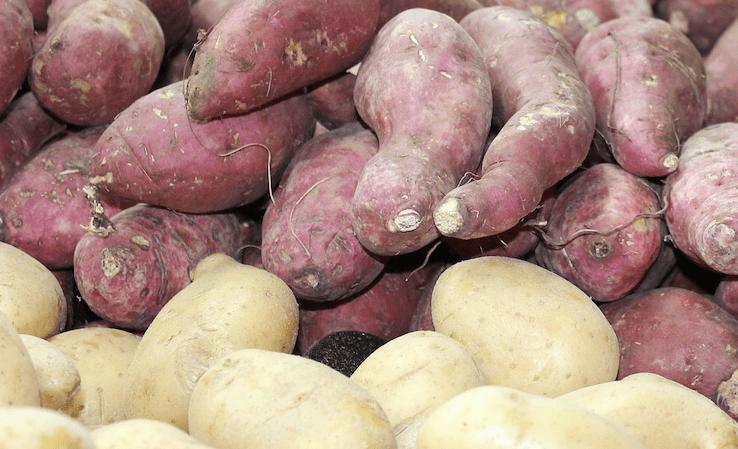 Kartoffel Vs. Sød Kartoffel