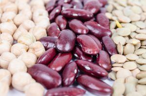 Hvilke bønner indeholder flest proteiner?
