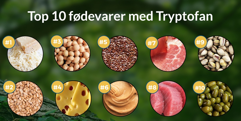 Tryptofan i mad - top 10 fødevare