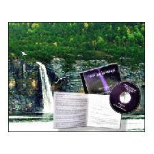 Image of PNN-Enhedsterapi CD