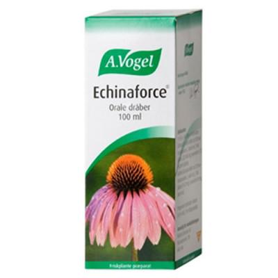 A. Vogel Echinaforce (100 ml)