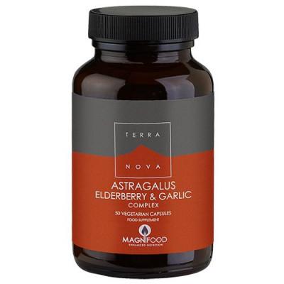 Astragalus elderberry & garlic complex (50 kap)