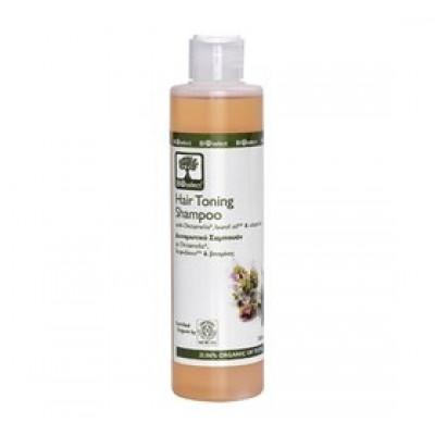 Oliven Shampoo Styrkende - 200 ml.