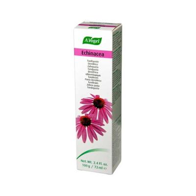Echinacea Tandpasta 100 g.