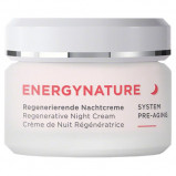 Annemarie Börlind, Regenerative Night Cream (50 ml)