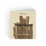 True Gym Tyggegummi Lakrids & Eucalyptus (20 g)