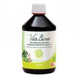 Vita Biosa Ingefær Ø (500 ml)