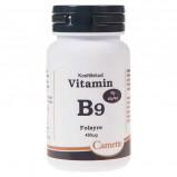 Camette vitamin B9 folsyre 90 tab. (450 µg.)
