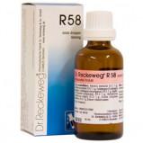 Dr. Reckeweg R 58 , 50 ml