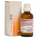 Dr. Reckeweg R 73