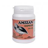 Amizan (vagtelæg), 120 Kap.