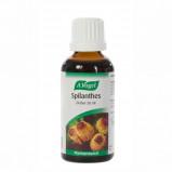A. Vogel Spilanthes Mundskyl (50 ml)