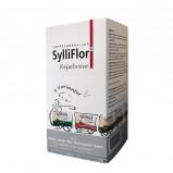 SylliFlor Rejsebreve (30 br.)