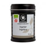 Urtekram Ingefær Ø 15 gr.