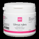 NDS Ulmus Rubra (Rød Elm) (100 gr)