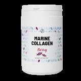 Plent Marine Collagen Berry (300 g)