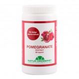 Natur Drogeriet Pomegranate Complex (90 kapsler)