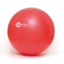Sissel Exercise Ball 55 cm (Rød)