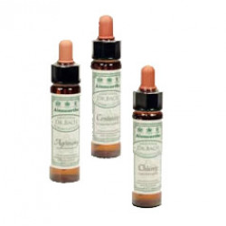 Dr. Bach Klematis Engholm (10 ml)