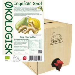 Ingefær shot m pære & citron Ø BiB (3 liter)