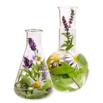 Oil of Life - Økologisk og naturlig olie