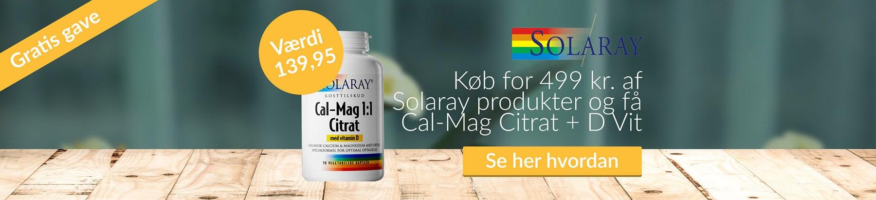Solaray Cal Mag